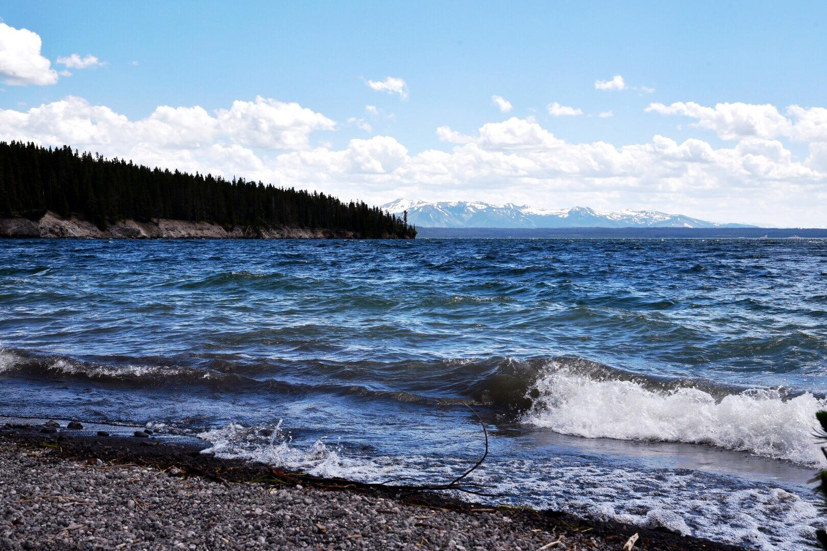 Yellowstone Lake is up to 400 feet deep and has over 100 miles of shoreline. At an elevation of 7,733 feet above sea level, the lake is the largest high altitude lake in North America.