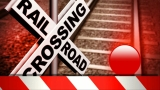 Tractor driver killed in collision with train